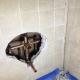 Shower Pipe Leak Repair