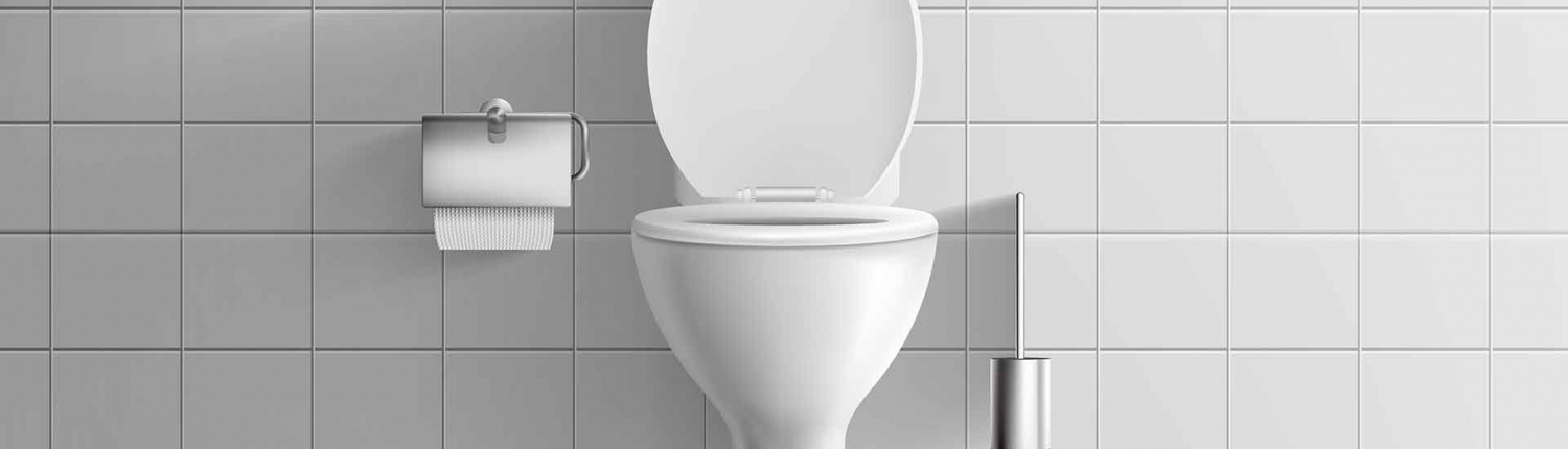 Toilet Installation and Replacement Services